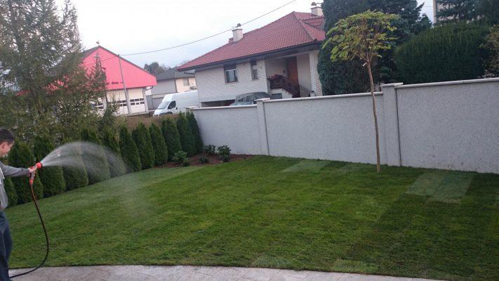 Zalivanje položene travne ruše